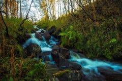 Wasserfall im Herbstwald Lizenzfreies Stockbild
