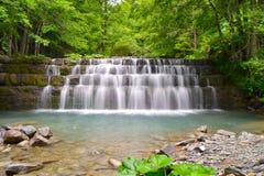 Wasserfall im Holz Stockfotografie