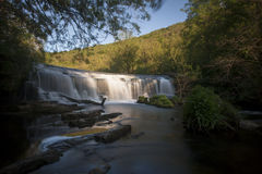 Wasserfall im Holz Lizenzfreies Stockfoto