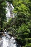 Wasserfall im Holz Stockbild