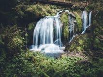 Wasserfall im Holz Stockfoto