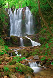 Wasserfall im Holz des Kolesino Dorfs, Makedonien lizenzfreie stockfotos