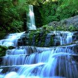 Wasserfall im mäßigen Regenwald Lizenzfreies Stockfoto