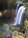 Wasserfall im Morgenlicht lizenzfreies stockbild