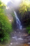 Wasserfall im Morgennebel Stockfotografie