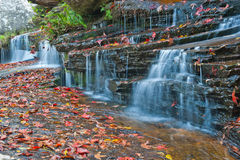 Wasserfall im Nationalpark von Thailand Stockfotografie