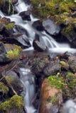 Wasserfall im Nebenfluss. Lizenzfreies Stockbild