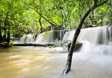 Wasserfall im Paradies Stockbild