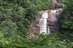 Wasserfall im Regenwald Stockbild