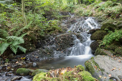 Wasserfall im See-Bezirk Stockfotos