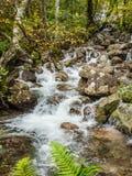 Wasserfall im Tal von Glen Nevis, Schottland lizenzfreie stockbilder