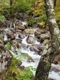 Wasserfall im Tal von Glen Nevis, Schottland stockfotografie
