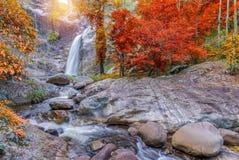 Wasserfall im tiefen Regenwalddschungel (Mae Re Wa Waterfalls) Stockbilder