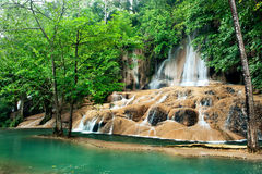 Wasserfall im tiefen Wald Stockfotografie