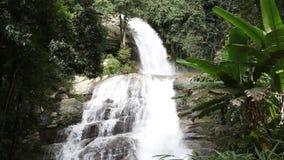 Wasserfall im tiefen Wald stock video