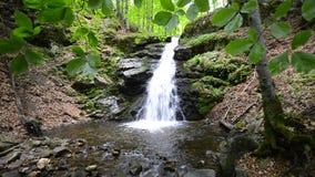 Wasserfall im tropischen Paradies stock footage