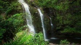 Wasserfall im tropischen Paradies (HD-Schleife) stock video footage