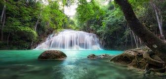Wasserfall im tropischen Wald Stockbild