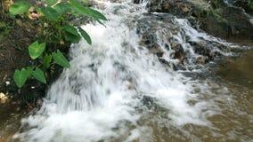 Wasserfall im tropischen Wald stock video footage