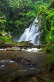 Wasserfall im Wald Lizenzfreie Stockfotos