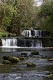 Wasserfall im Wald Lizenzfreies Stockbild