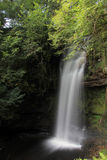 Wasserfall im Wald Stockfoto