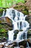Wasserfall im Wald Lizenzfreie Stockbilder