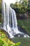 Wasserfall im Wald in der Verdammung Bri, Vietnam lizenzfreie stockfotografie