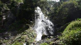 Wasserfall im Wald des tropischen Regens stock video