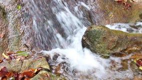Wasserfall im Wald und in den Felsen bedeckt mit Moos stock video