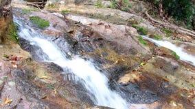 Wasserfall im Wald und in den Felsen bedeckt mit Moos stock video footage