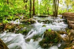 Wasserfall im Wald von Plitvice Stockfotografie