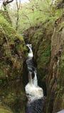 Wasserfall an inglton Fällen Lizenzfreie Stockfotografie