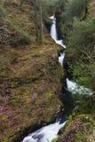 Wasserfall in Irland Stockbilder