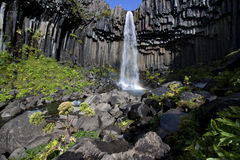 Wasserfall in Island Stockbild