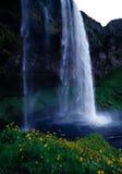 Wasserfall Island Lizenzfreie Stockfotografie