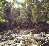 Wasserfall, kein Wasser lizenzfreie stockfotografie