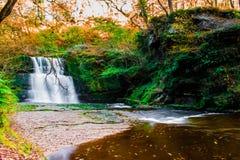 Wasserfall-Land Stockfotos