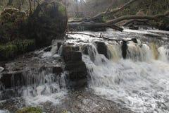 Wasserfall, Lynn Glen, Dalry Lizenzfreie Stockbilder