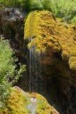 Wasserfall-Mädchen zerreißt Nahaufnahme Stockbild