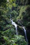 Wasserfall in Maui Hawaii Stockfotos