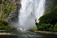 Wasserfall in Milford Sound Lizenzfreies Stockfoto