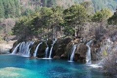 Wasserfall mit Bäumen bei Jiuzhaigou stockfotos