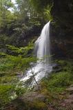 Wasserfall mit dem Pfad, der hinter ihn geht Lizenzfreie Stockbilder