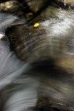 Wasserfall mit Espenblatt Stockbild