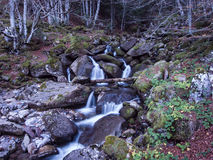 Wasserfall mit Felsen Stockbilder