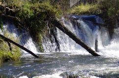 Wasserfall mit gefallenen Bäumen über ihm Stockbild