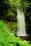 Wasserfall mit grünen treees Lizenzfreie Stockfotos
