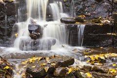 Wasserfall mit Herbstblättern Lizenzfreie Stockfotografie