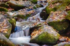 Wasserfall mit moosigen Felsen und gefallenen Blättern Lizenzfreies Stockbild